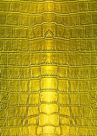 Skin golden leather texture surface background photo