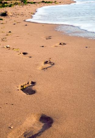 llegar tarde: Huellas en una playa de arena