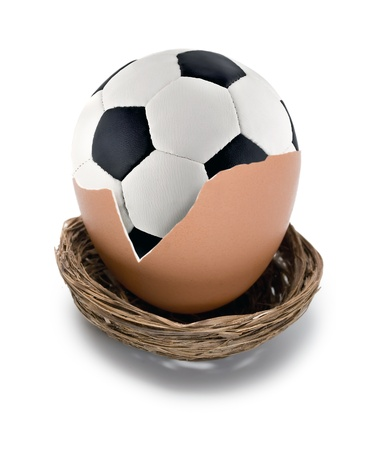 soccer ball on eggs in nest isolated on white  photo
