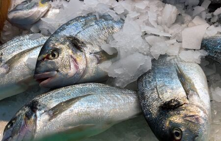 Fresh fish is displayed in a supermarket Stock Photo - 17035119