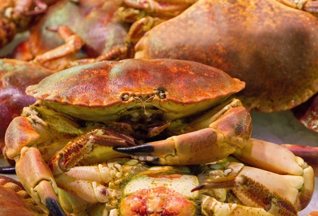 Red crab is displayed in a supermarket Stock Photo - 17037028
