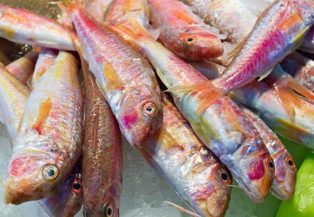 fish vendor: Fresh red fish is displayed in a supermarket Stock Photo