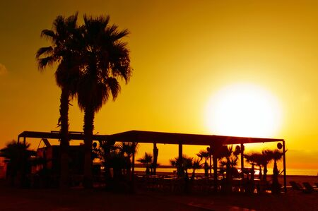 Sunset in tropical beach with silhouettes of a palm trees Stock Photo - 17014561