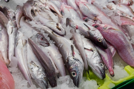 fish vendor: fresh fish in ice at the market Stock Photo