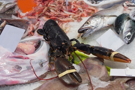 seafood is displayed in a supermarket Stock Photo - 17182080