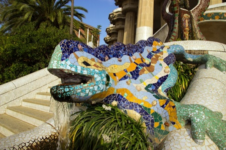 Lizard in Park Guell in Barcelona, Spain   photo