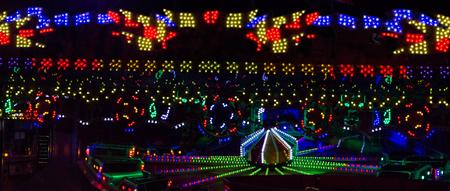 carrousel: ferris wheel illuminated at night