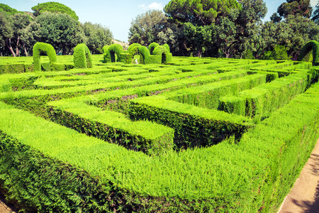 quick hedge: green park labyrinth Barcelona. Catalonia