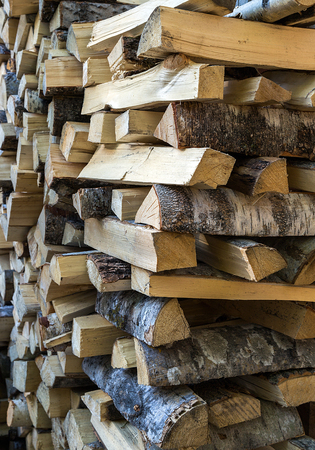 softwood: dry birch chopped firewood logs in a pile