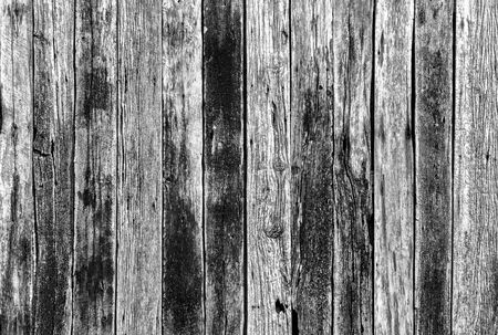 wood panel: panel wall wood texture background Stock Photo