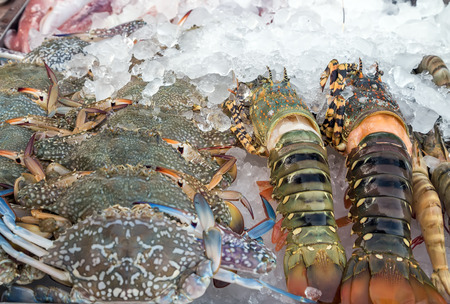 pacific northwest: Assorted lobster and crabs close up in fish market