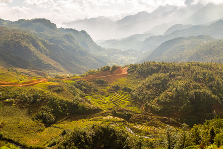 bali province: Landscape of Terraced Rice Field hill Sa Pa. Lao cai province Vietnam. Stock Photo