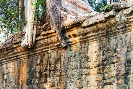 woodland sculpture: fence of Angkor Wat, part of Khmer temple complex, Asia. Siem Reap, Cambodia. Ancient Khmer architecture in jungle. Stock Photo
