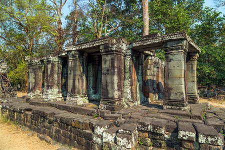 woodland sculpture: Ruins of Angkor Wat, part of Khmer temple complex, jungle. Siem Reap, Cambodia.