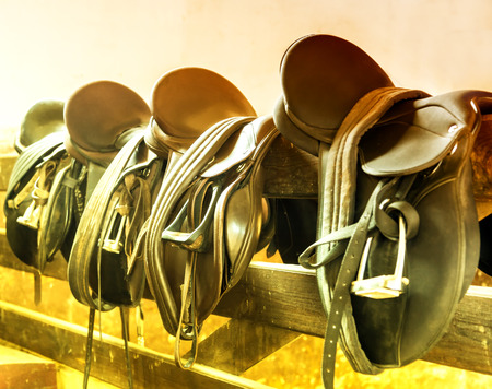reigns: sunlight Rider Leather Saddles Stock Photo