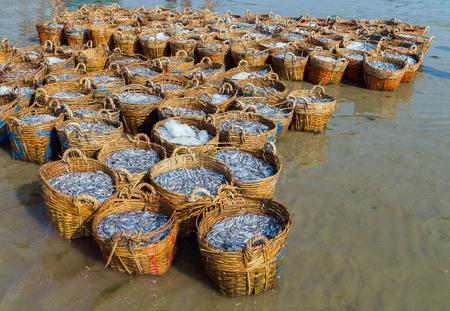 ne: Fresh fish market on Mui Ne beach in Vietnam