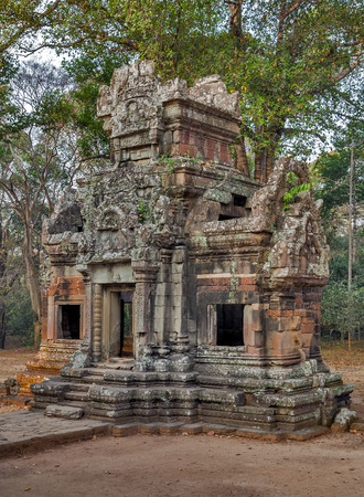 woodland sculpture: Ruins of Angkor Wat, part of Khmer temple complex, Asia. Siem Reap, Cambodia. Ancient Khmer architecture in jungle.