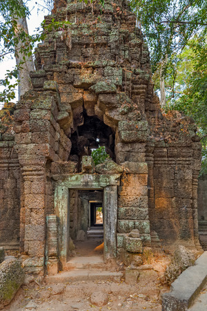 woodland sculpture: Cambodia. Ancient Khmer architecture in jungle.