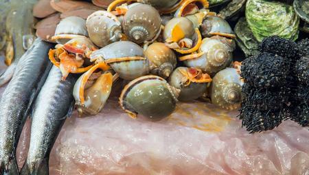 burbot: Mariscos en vitrina del mercado de pescado Foto de archivo