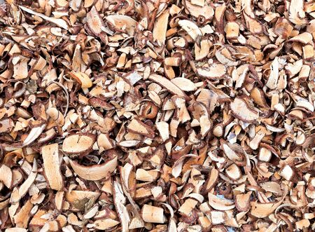 wood chip: Wood Chip, wooden shaving heap backgrounds Stock Photo