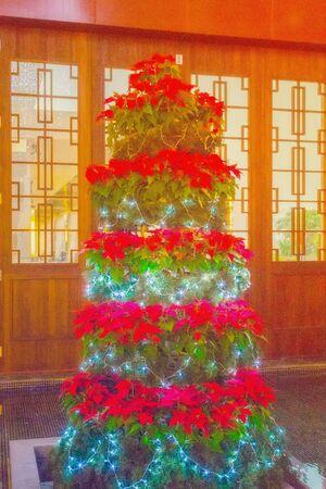 inter: Decorating Christmas tree x-mas inter house