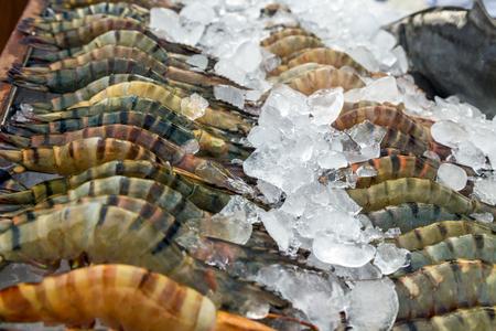 street market: prawn, shrimp fresh cool on ice at street market