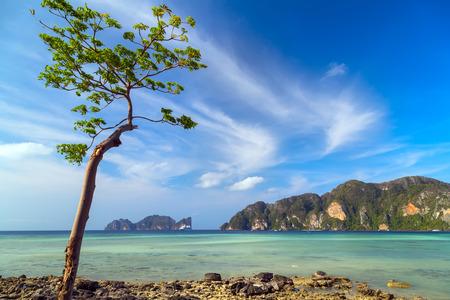 Beach in Krabi province, Thailand Stock Photo