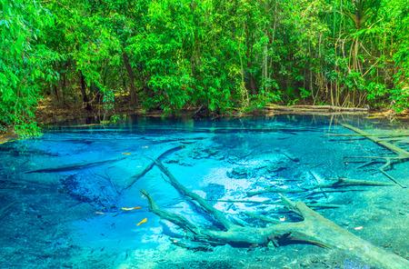 forest Sra Morakot Blue Pool Krabi Province, Thailand 版權商用圖片