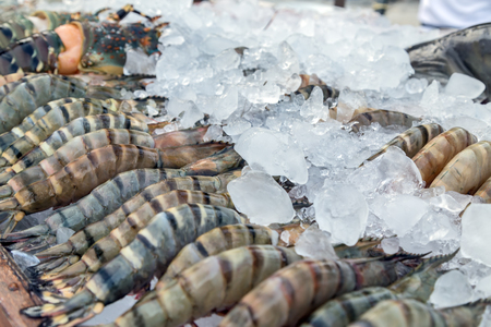 street market: display shrimp fresh cool on ice at street market Stock Photo