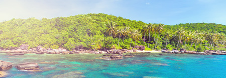 jungle island landscape with coconut palm trees, vintage nature background Stock Photo