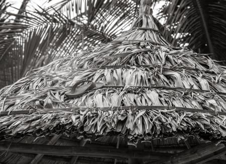 flip flops: flip-flops on the sand of a beach umbrella Palm b&w, Coconut Palm tree