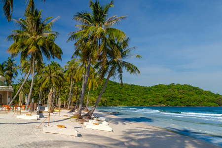 Beach Chaise-longue with sun umbrella on Bai Sao Beach Coconut palms and white sandy, Phu Quoc island, Vietnam.