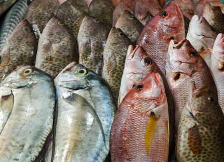 raw fresh cool fish on ice at street market. Seafood on ice, background Sea food