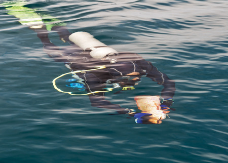 Scuba Diver Swimming in wetsuit neoprene, Spear fisherman with big fish Underwater blue ocean background in sea Stock Photo
