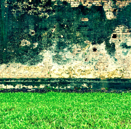 Green grass and old brick wall background red urban cracked building