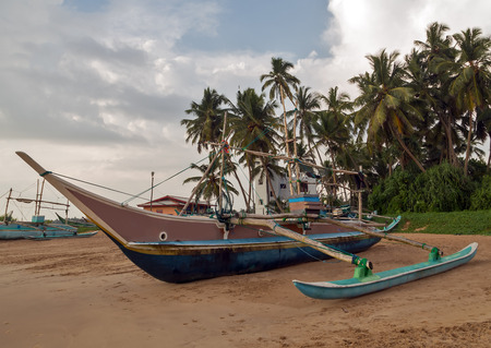 Sri Lankan traditional fishing catamarans, Colorful fishing boats on a long sandy beach on the ocean coast of Sri Lanka. Popular landmark fishing Ceylon village.