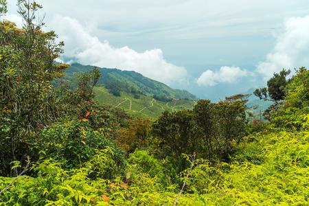Landscape Hills Horton Plains National Park, Central highlands, Sri Lanka