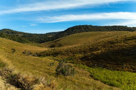 Green meadows and mountains landscape Horton Plains National Park Sri Lanka.