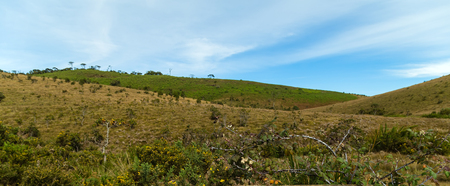 Horton Plains National Park highlands of Sri Lanka and is covered by montane grassland and cloud forest. Ceylon, Asia.