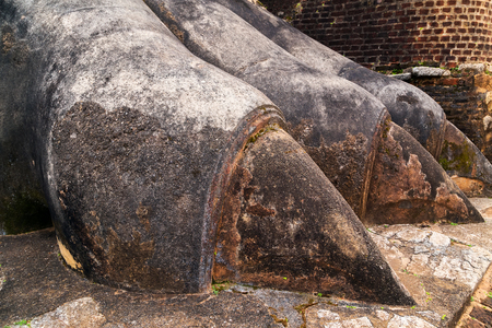 lion stone paws decorate the gate to Sigiriya Fortress, located on the top platform of the rock, Sri Lanka