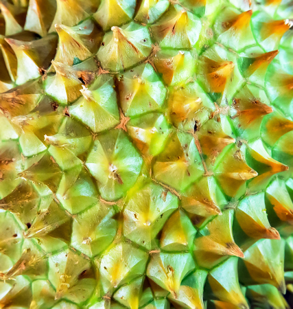 tropical fruits Durian background, thailand food.