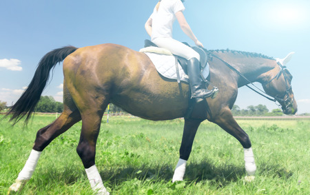 Happy spring day horse and rider runner in green grass
