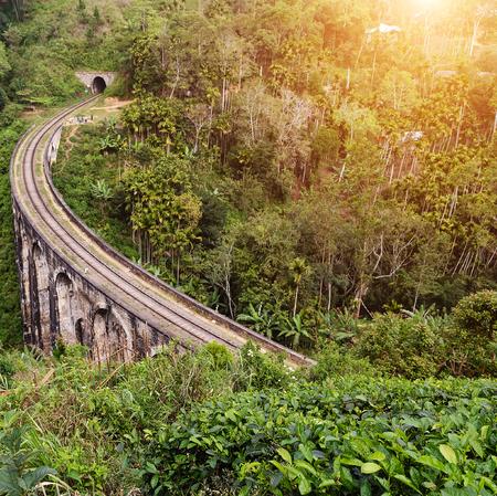 Palm landscape Arches Bridge in Demodara Ella, railways Sri Lanka Mountain . Stock Photo