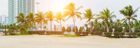 Tropical coconut trees Pham Van Dong Beach in particular and Da Nang travel. Son Tra District, DaNang, Vietnam Stock fotó