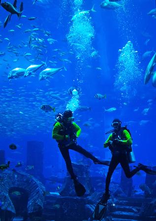 Buzo nadando en neopreno traje de neopreno, pescador de lanza con gomas de fusil submarino fondo azul del océano en el mar
