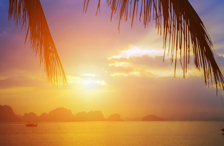 Dramatic Colors evening sky clouds Sunset Background palm trees silhouette. Halong Bay Tours, islands spectacular limestone Vietnam. Imagens