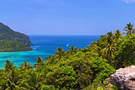 View Point Koh Phi Phi Don in andaman sea, Phuket, Krabi, South of Thailand. Tropical beach with coconut palm tree. Stock Photo