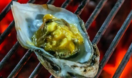 muscle mussel oyster grilling steamed barbecue Cooking bbq Food Background
