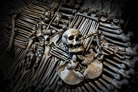 vintage background with soft focus. Human Skeleton bones and skulls background. Abstract concept Skeleton grave. Part of interior decorated marble skull and bones church wall hell. Stock Photo