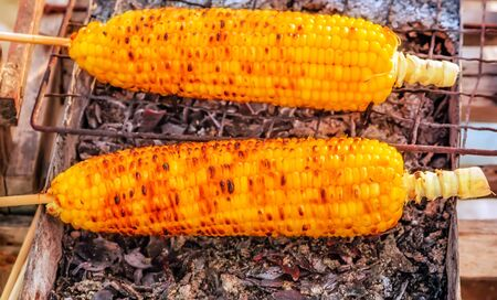 Corn cobs Barbecue steamed cooking grill Food Background